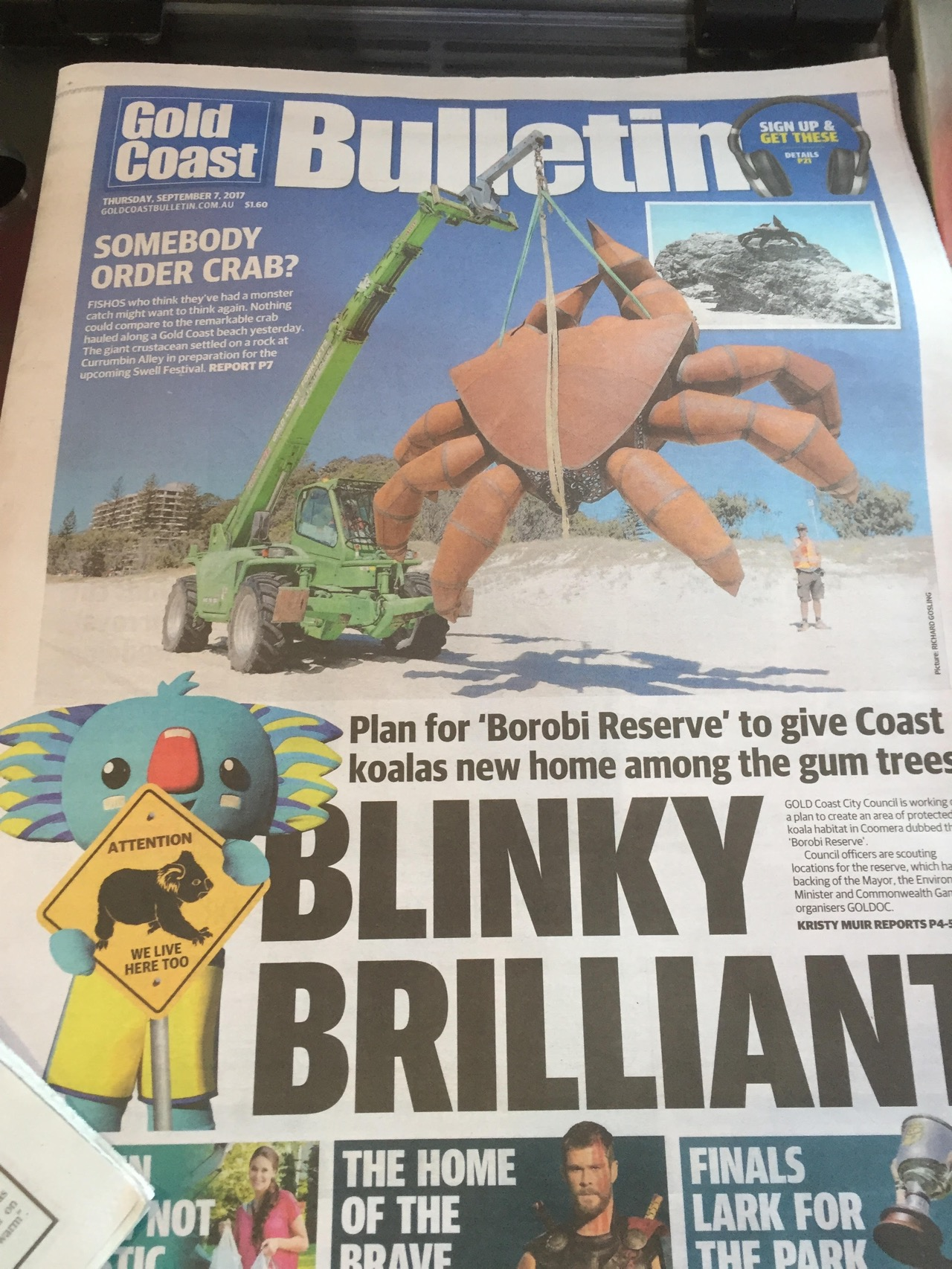 Front Page News Swell Festival Wow